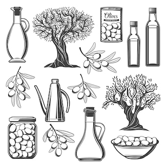Бутылка оливкового масла, ветвь дерева с фруктами и листьями
