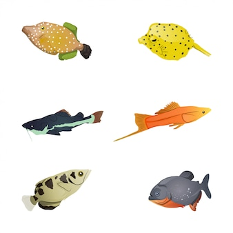 カラフルな魚のコレクション
