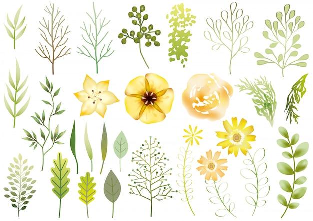 分離された植物の要素のセット。図。