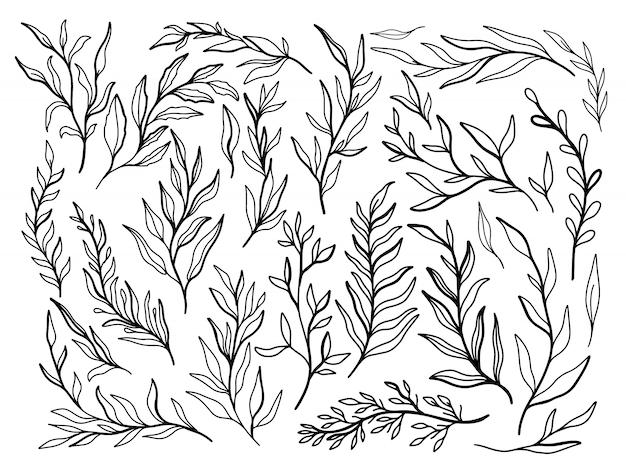 Абстрактная ветвь выходит природе установленная нарисованная рука собрания. этнический орнамент, цветочный принт, текстильная ткань, ботанический элемент.