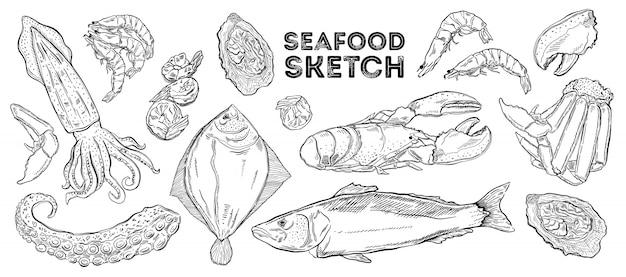 Морепродукты эскиз набор. рука рисования кухни.