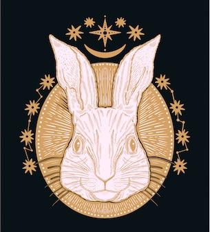 ウサギ動物の魔法の茶色の図面