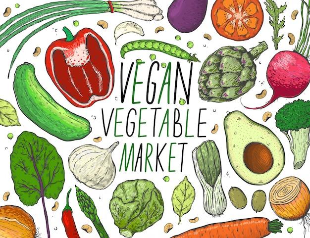 Вектор большой набор овощей в реалистическом стиле эскиза.