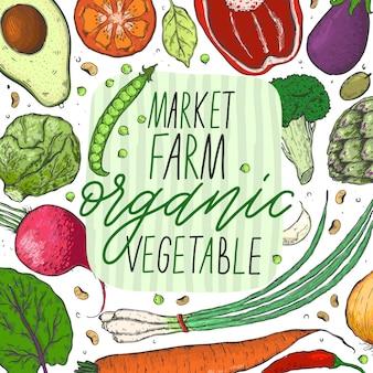 現実的なスケッチスタイルの野菜の大きなセットをベクトルします。