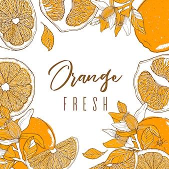 オレンジ色の果物のインク手描きフレーム