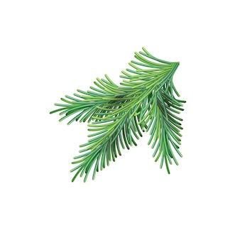 Рождественская зеленая пышная еловая ветвь. елочная новогодняя сетка ветка
