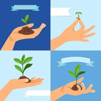 葉と人間の手で土と春の植物