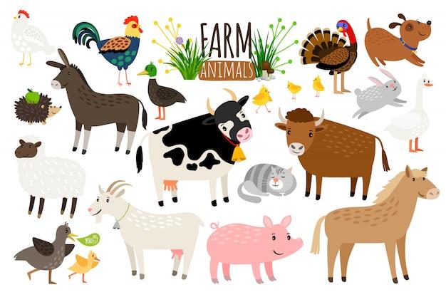 農場の動物