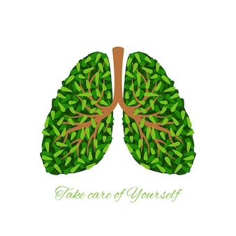 Зеленые листья легкие