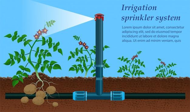 ミネラル肥料の生産。