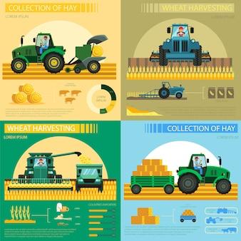 Коллекция сена и пшеницы уборка инфографики