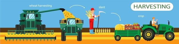 水平フラットバナー小麦収穫斜め作物