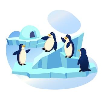 Группа забавных пингвинов, играющих на льдине, в зоопарке