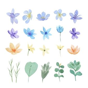 Цветочные и листья акварельные элементы установлены
