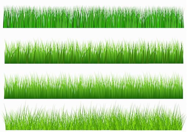 白い背景で隔離のデザイン要素として使用するための長さと密度で新鮮な緑の草の大規模なセット