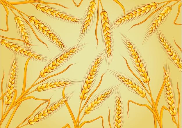 小麦は黄色の背景に分離しました。テンプレート、印刷、デザイン要素ベクトルイラスト