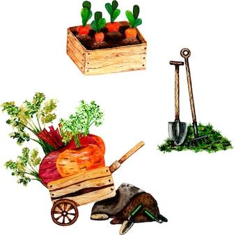 春の園芸、木製カートの野菜。