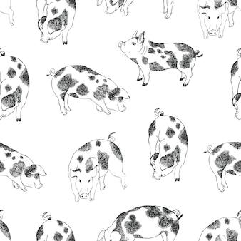Симпатичные маленькие свиньи фон