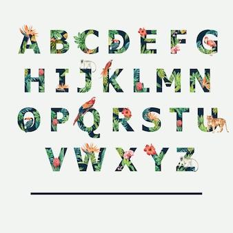 熱帯のアルファベット