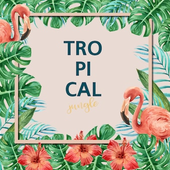 熱帯の夏フレームカード