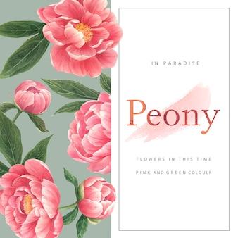 Акварель пион цветочная открытка