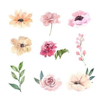 水彩ピンクの牡丹、花の手描きイラストのセット
