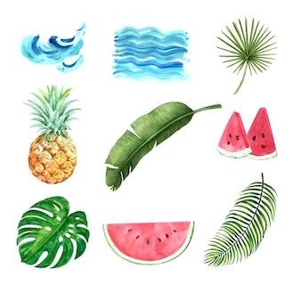 熱帯植物水彩創造的な要素、デザインベクトルイラスト。