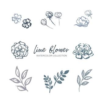ライン花水彩花、花植物、白のイラストと葉。