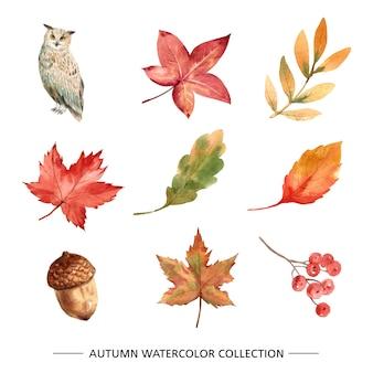 水彩画と葉のセット