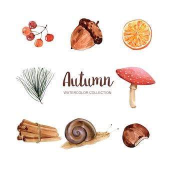 Красивая осень иллюстрация с акварелью для декоративного использования.