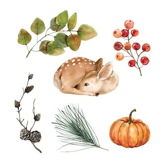 装飾用の美しい創造的な秋の水彩イラスト。