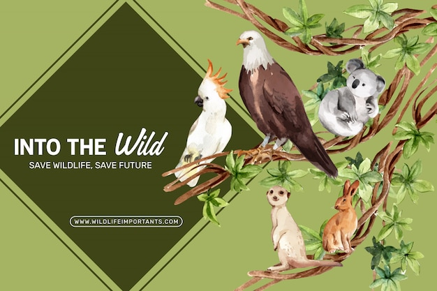 イーグル、ウサギ、ミーアキャット水彩イラストと動物園フレームデザイン。