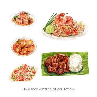 創造的なデザインは、水彩のタイ料理のイラストを分離しました。