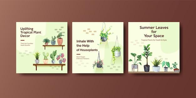 夏の植物と家の植物はテンプレートデザインを宣伝します
