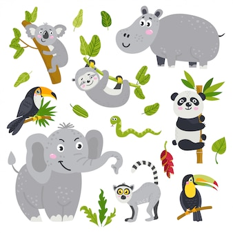 Векторный набор милых животных из джунглей