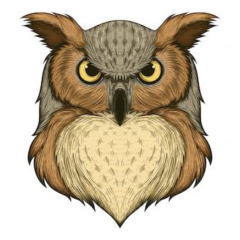フクロウの図