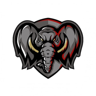 Голова слона вид спереди