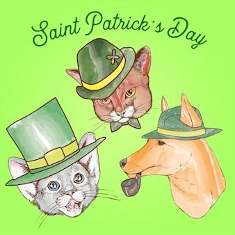 День святого патрика, собака и кошка