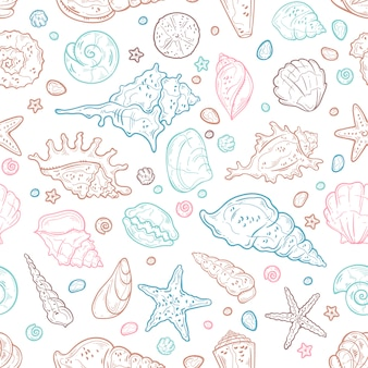 Векторные иллюстрации зарисовок. различные виды ракушек.