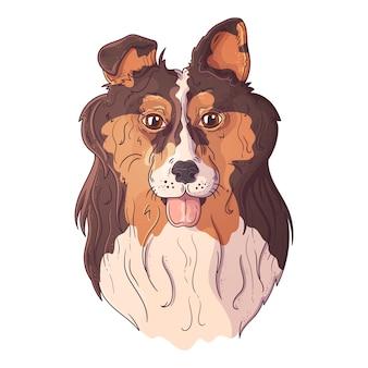 ベクタースケッチイラスト。かわいいコリーの肖像画。
