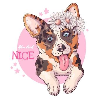 Векторные иллюстрации зарисовок. портрет милой собаки корги.
