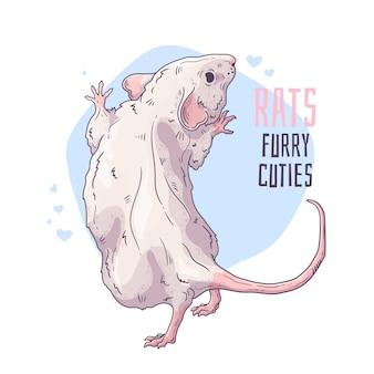 Вектор рисованной иллюстрации. симпатичная реалистичная крыса.