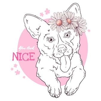 Зарисовка иллюстраций. портрет милой собаки корги.