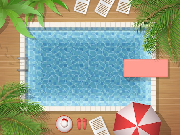 Вид сверху на бассейн и пальму
