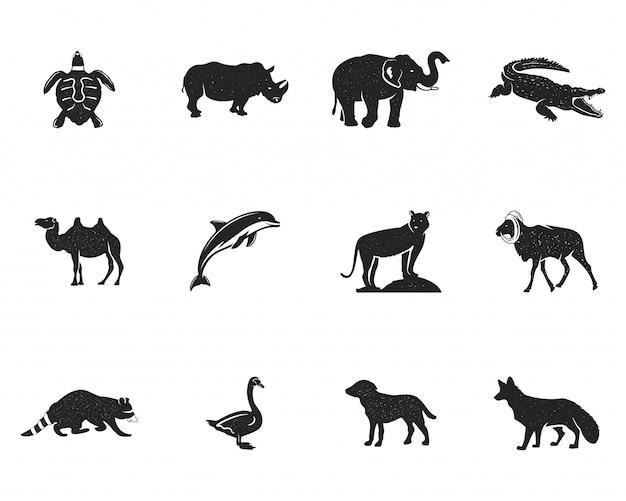 分離された野生動物フィギュアと図形のコレクション