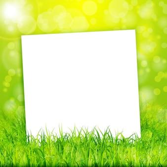 Природа фон с листа белой бумаги в зеленой траве