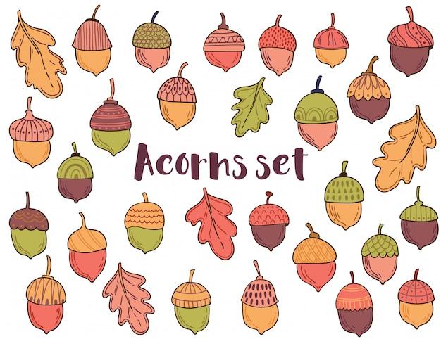 Векторная коллекция с желудями и листьями