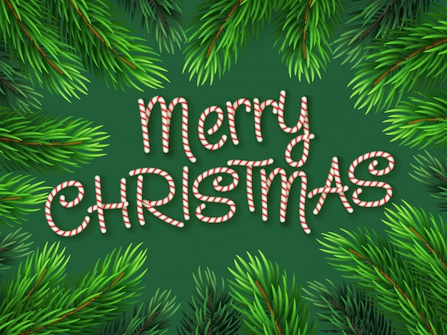 キャンディケインフォントのクリスマス国境モミの木の枝