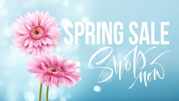 ピンクのガーベラのヒナギク。春販売バナー