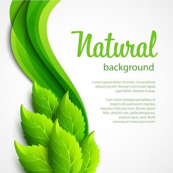 Естественный фон вектор с зелеными весенними листьями